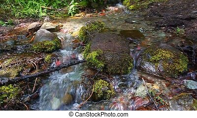 Glacier National Park - Cold water flows through a small...