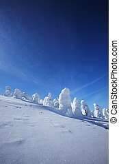 Soft rime, Mt.Zao in Japan - Snow monster on mount Zao,...
