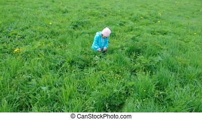small girl on meadow with dandelion