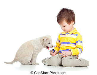 cute child playing with a puppy