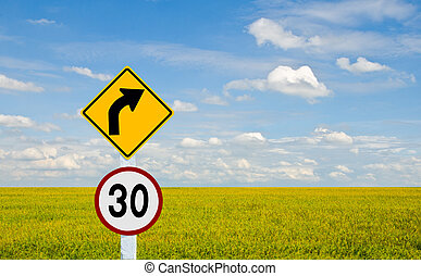 Traffic sign Pole on rice  field background.