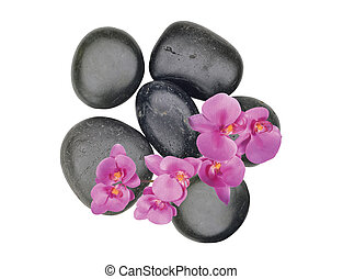 Black spa stones and pink orchid flower isolated on white