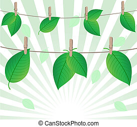 Vector illustration of the leaves on rope on sunny...