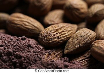 almonds in cacao