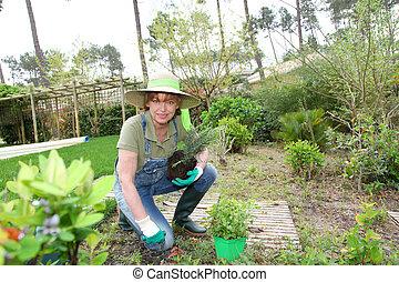 Senior woman gardening in spring time