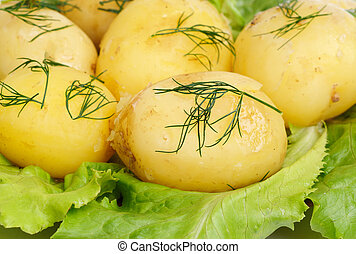 New potato  and green  salad  background
