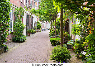 Small streets of Harlem - Quiet little street of Haarlem....