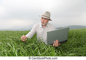 Farmer examining crop with laptop computer