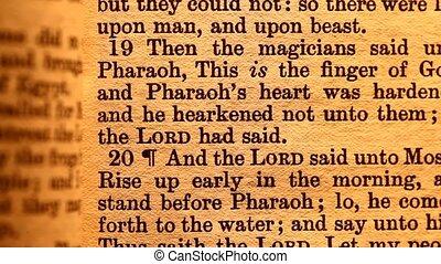 Bible - Close up of Holy Bible