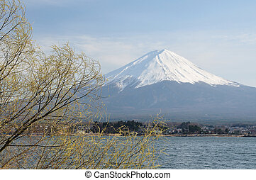 Mt. Fuji - Mt Juji in Japan