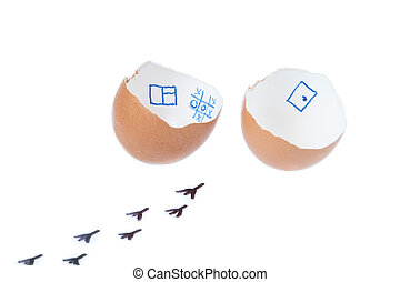 From the egg hatched chick. On a white background.