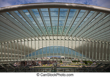 Liege-Guillemins railway - Contemporary and futuristic...