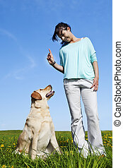 dog trainer - a dog trainer teaching her dog to listen to...