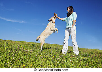 dog trainer - a young woman training her dog to jump up