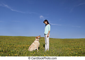 dog trainer - young beautiful woman training her dog to sit...