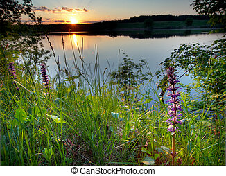 Sunrise over lake - Summer sunset on a lake. Photo...