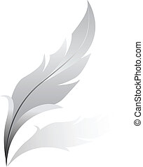 silver feather - Vector illustration of silver feather