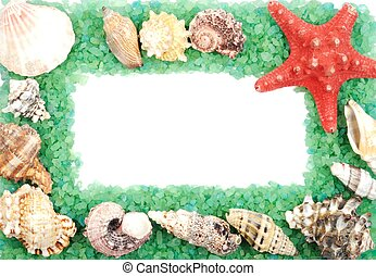 Sea shell frame - Border with seashells and green sea salt,...