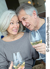 Portrait of happy senior couple cheering with wine