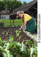 Grandmother planting vegetables