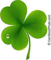 Clover Leaf - Clover Four Leaf For Saint Patricks Day,...