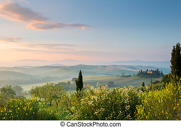 First sunlight in Tuscan hills