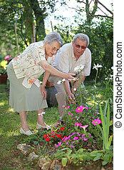 夫婦, 花園, 年長