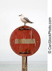 Forbidden - Warning notice board in swakopmund - namibia