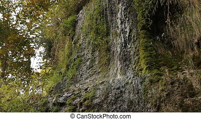 Dripping cliff - Stream of water flows from a cliff overhang...