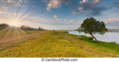 Colorful summer landscape near the river