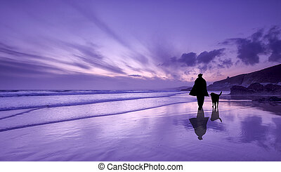 Mans best friend - Reflections of a man and his dog on the...