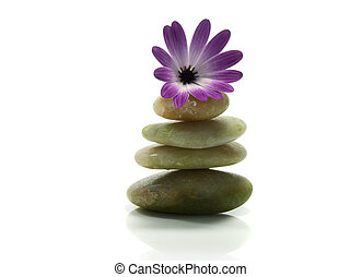 rocks in balance with pink flower - pink flower on top of...