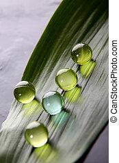 Closeup of bath pearls on green leaf