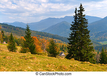 Beautiful autumn landscape in the Carpathian mountains