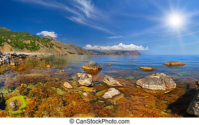 Colorful summer landscape with sea