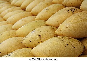 Mangoes - Close up of fresh mangoes at the market