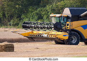 Combine Harvester in a Field of Cereal