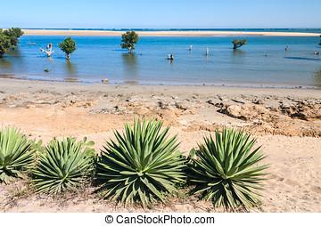 Seascape of Ifaty, southwestern Madagascar
