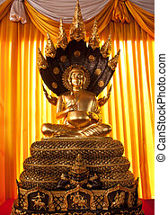 Buddha in meditation  - Buddha in meditation
