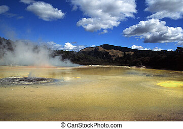 Rotorua Thermal.