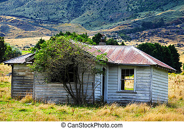 Old Farm Building New Zealand - Old farm building with sheep...