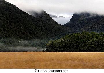 New Zealand Fiordland - Landscape view of Fiordland National...