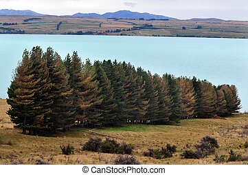 Lake Tekapo, New Zealand - Scenic view of lake tekapo, New...