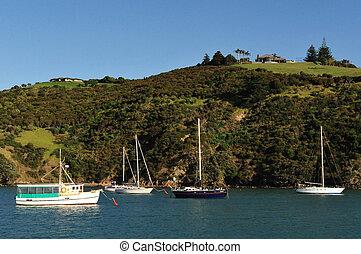 New Zealand Waiheke Island - Landscape view of Waiheke...