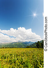 vertical landscape with mountains, Altai, Suberia