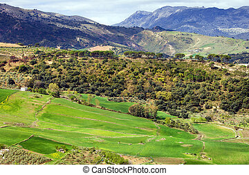 Andalusia Landscape