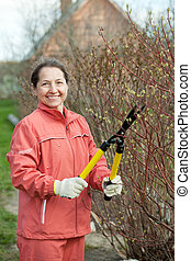 Mature woman trimmed branches in the garden in spring