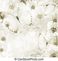 Butterflies and orchids flowers  background ( 1 of set)