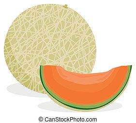 cantaloupe illustrations and clipart 808 cantaloupe royalty free rh canstockphoto com melon clipart lemon clip art border