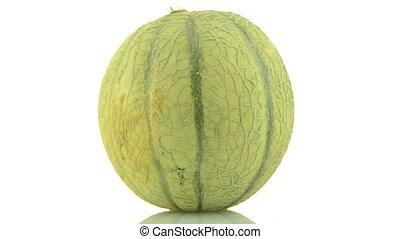 Cantaloupe melon rotating on white background.